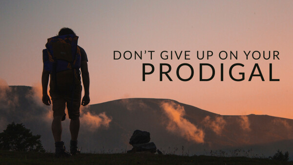Don't Give Up on Your Prodigal